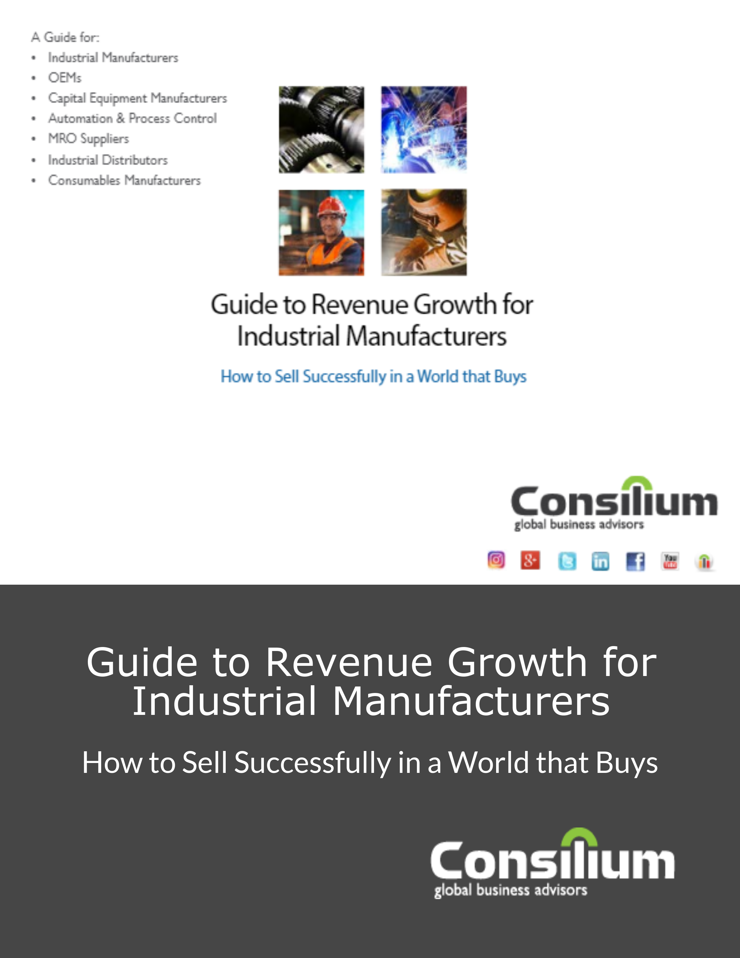 Guide to Revenue Growth-1